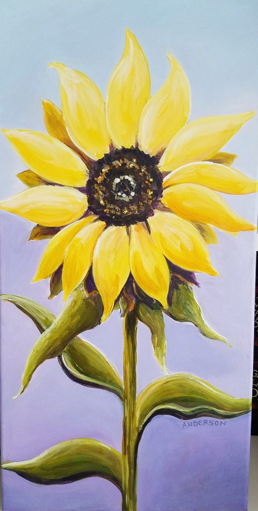 20 x 10 Sunflowers