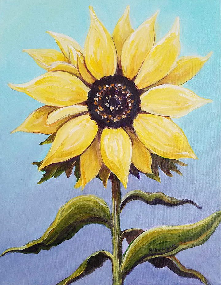 14 x 11 Sunflowers